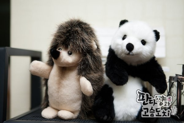 Panda_And_The_Hedgehog-0009
